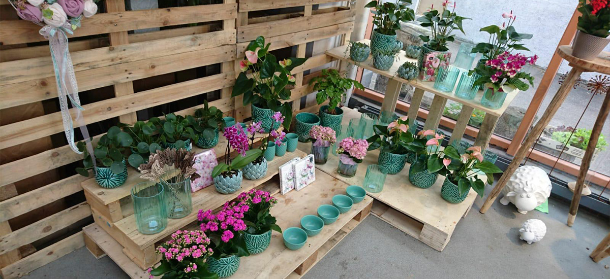 blumen-floristik